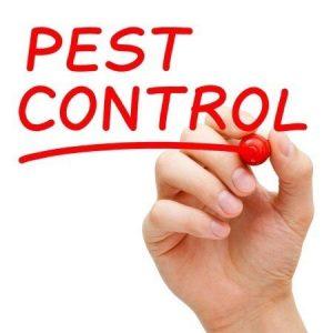 Pest Control Bixby OK
